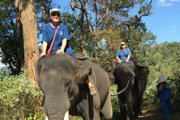 Solo Travel: Thailand Elephant Ride