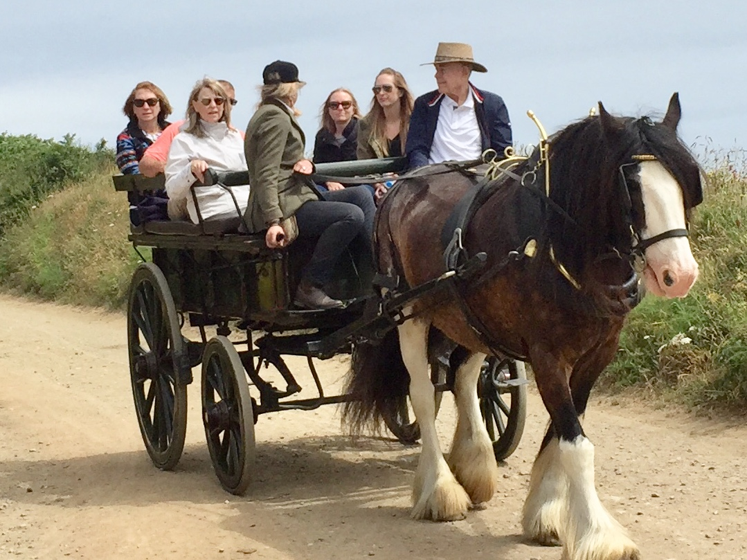 Sark Carriage Ride